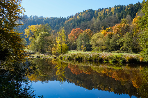 Bavarian Forest「Germany, Bavaria, Lower Bavaria, Bavarian Forest, Nature reserve Obere Ilz, Ilz river in autumn」:スマホ壁紙(10)