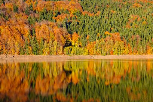 紅葉「Germany, Bavaria, Lower Bavaria, Bavarian Forest, Nature reserve Obere Ilz, Ilz river in autumn」:スマホ壁紙(9)