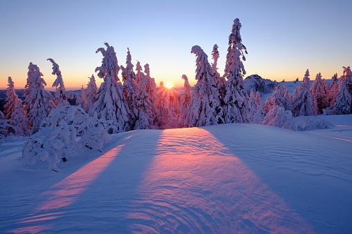 Bavarian Forest「Germany, Bavaria, Bavarian Forest in winter, Great Arber, Arbermandl, snow-capped spruces, sunset」:スマホ壁紙(9)