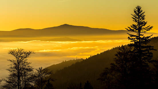 Bayerischer Wald National Park「Germany, Bavaria, Bavarian Forest National Park, View from valley with waft of mist at sunrise」:スマホ壁紙(8)