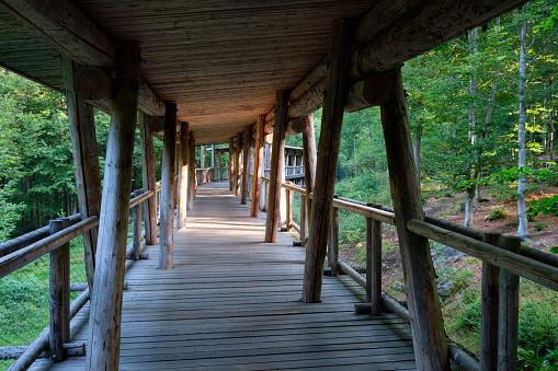 Bavarian Forest「Germany, Bavaria, Bavarian Forest National Park, empty wooden bridge」:スマホ壁紙(19)