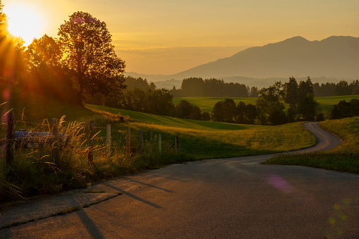 European Alps「Germany, Bavaria, Allgaeu, East Allgaeu, Swabia, Ammergau Alps and Tannheim Mountains, Ussenburg near Rosshaupten, empty road at sunrise」:スマホ壁紙(12)