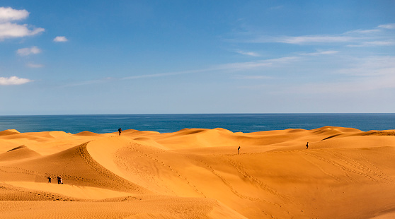 Saturated Color「Dunes of maspalomas - Canary Islands, Spain」:スマホ壁紙(17)
