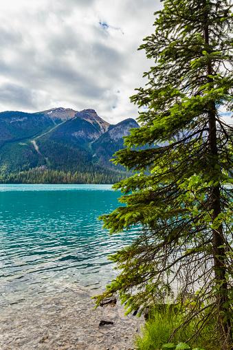 Yoho National Park「Emerald Lake」:スマホ壁紙(3)