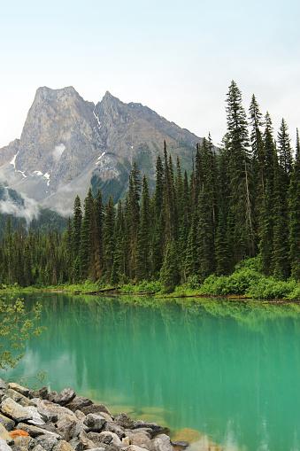 Yoho National Park「Emerald Lake in Yoho National Park within British Columbia, Canada」:スマホ壁紙(6)
