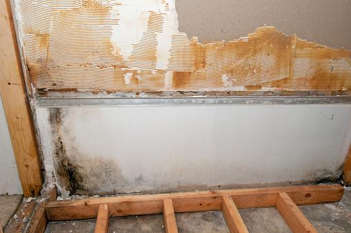 Basement「A basement in the midst of construction」:スマホ壁紙(15)