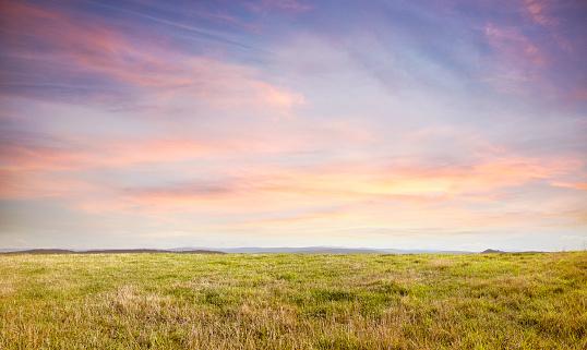 Horizon「Grass hill top」:スマホ壁紙(7)
