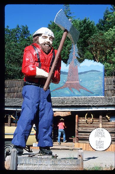 Sequoia Tree「California Redwood Industry」:写真・画像(14)[壁紙.com]