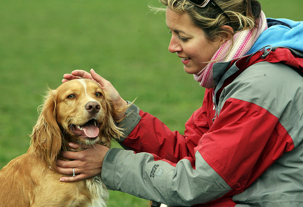 Pets「New Laws For Pet Welfare To Come Into Force」:写真・画像(5)[壁紙.com]