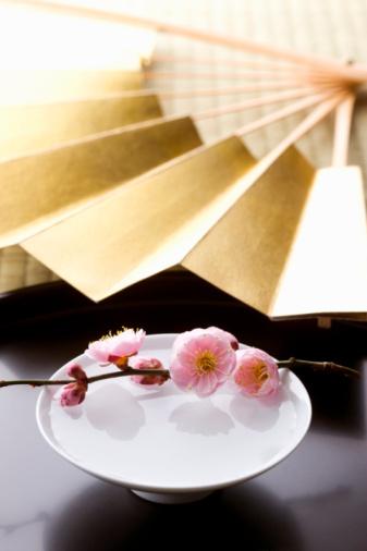 Sake「Sake and a folding fan on a tray」:スマホ壁紙(14)