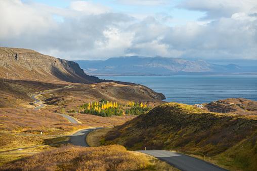 地質構造「シンクヴェトリル バレー - アイスランド」:スマホ壁紙(3)