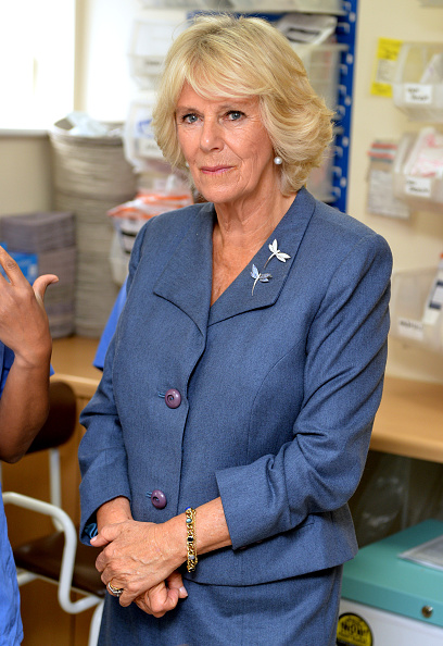 Brightly Lit「Duchess Of Cornwall Undertakes Visits To Highlight The Issues Of Rape And Sexual Abuse」:写真・画像(4)[壁紙.com]