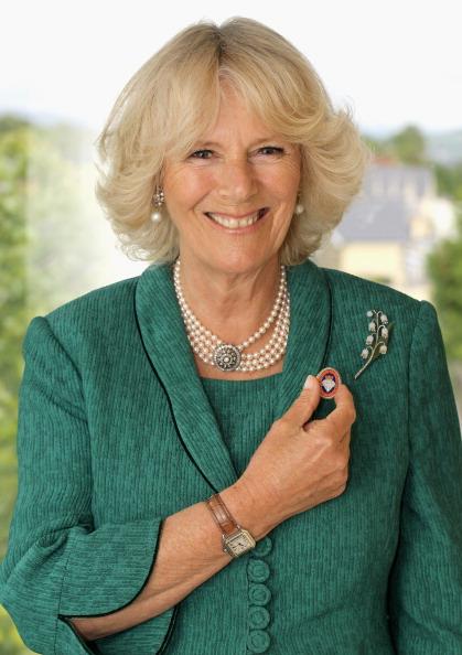 トップランキング「The Duchess of Cornwall Supports Diamond Champions Campaign」:写真・画像(13)[壁紙.com]