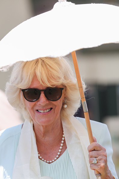 King's Lynn「The Prince Of Wales And The Duchess Of Cornwall Visit Sandringham Flower Show 2019」:写真・画像(18)[壁紙.com]