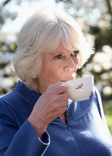 Tea「The Duchess Of Cornwall Hosts A Tea Party To Celebrate The 5th Anniversary Of First Story」:写真・画像(15)[壁紙.com]