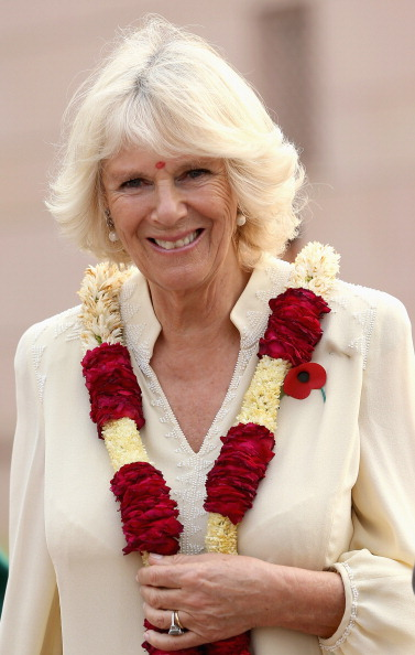 Bindi「The Prince Of Wales And Duchess Of Cornwall Visit India - Day 3」:写真・画像(13)[壁紙.com]