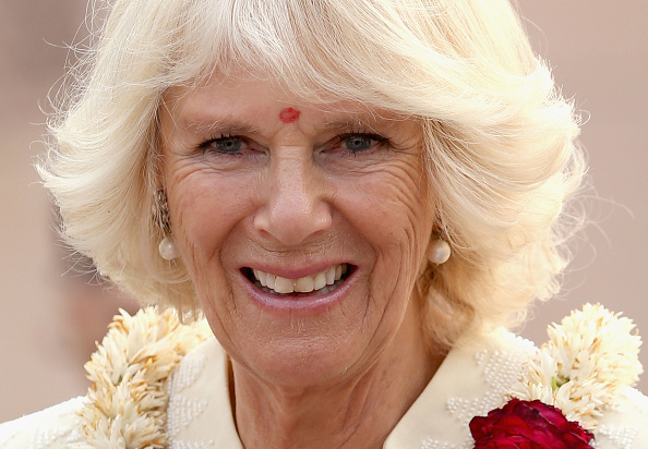 Bindi「The Prince Of Wales And Duchess Of Cornwall Visit India - Day 3」:写真・画像(16)[壁紙.com]