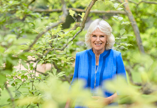 Camilla - Duchess of Cornwall「Official Portrait Of The Duchess Of Cornwall To Mark HRH's 73rd Birthday」:写真・画像(13)[壁紙.com]