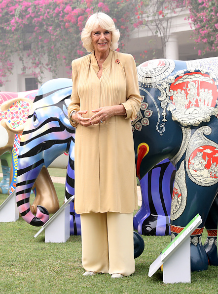 Delhi「The Prince Of Wales & Duchess Of Cornwall Visit Singapore, Malaysia, Brunei And India - Day 9」:写真・画像(8)[壁紙.com]