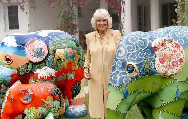 Delhi「The Prince Of Wales & Duchess Of Cornwall Visit Singapore, Malaysia, Brunei And India - Day 9」:写真・画像(7)[壁紙.com]