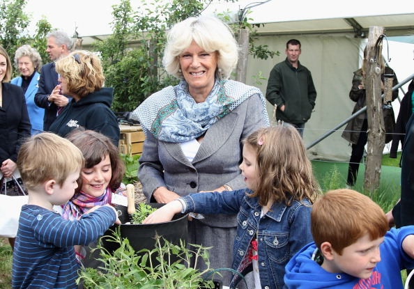 Horticulture「Visitors At The Hay Festival 2011」:写真・画像(19)[壁紙.com]