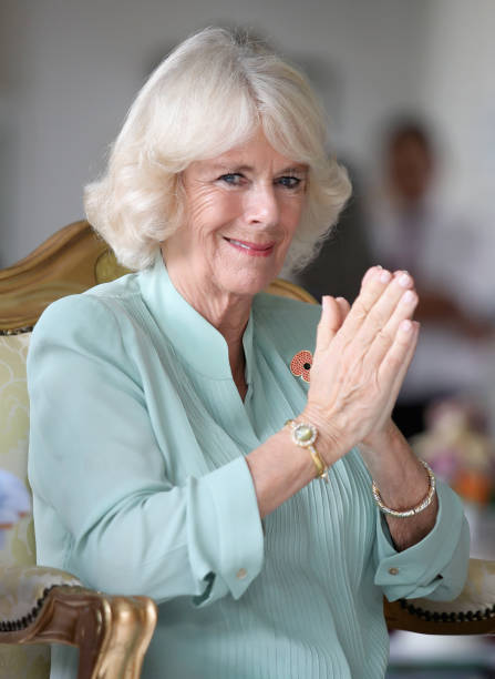 Kuala Lumpur「The Prince Of Wales & Duchess Of Cornwall Visit Singapore, Malaysia, Brunei And India - Day 5」:写真・画像(13)[壁紙.com]