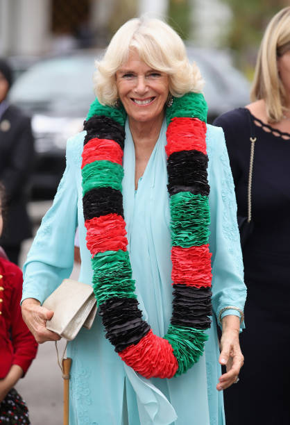 Day 4「The Prince Of Wales & Duchess Of Cornwall Visit Singapore, Malaysia, Brunei And India - Day 4」:写真・画像(17)[壁紙.com]