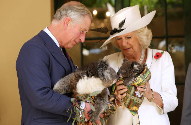 The Prince Of Wales And Duchess Of Cornwall Visit Australia - Day 3:ニュース(壁紙.com)
