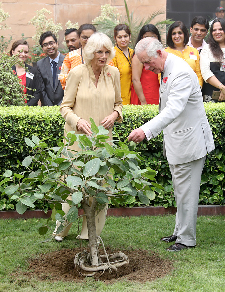 Tropical Tree「The Prince Of Wales & Duchess Of Cornwall Visit Singapore, Malaysia, Brunei And India - Day 9」:写真・画像(15)[壁紙.com]