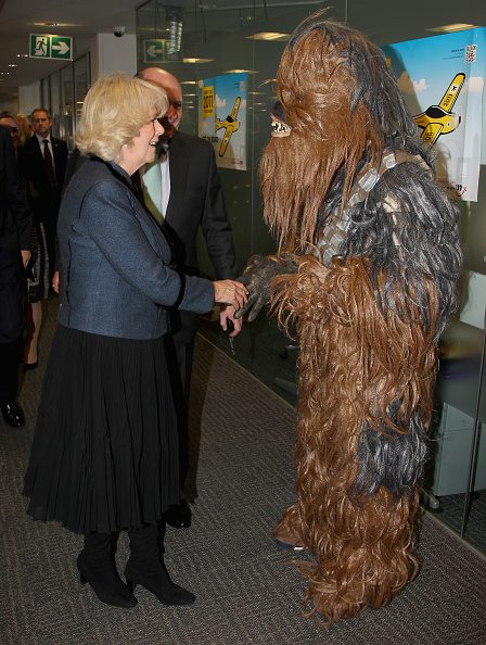 Caritas Internationalis「The Duchess Of Cornwall Attends The 19th Annual ICAP Charity Day」:写真・画像(19)[壁紙.com]