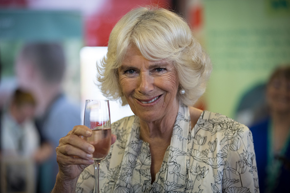 Annual Event「The Prince Of Wales And Duchess Of Cornwall Visit Devon And Cornwall - Day 3」:写真・画像(0)[壁紙.com]