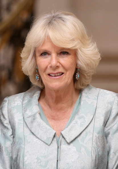 Turquoise Colored「The Duchess Of Cornwall Attends First Solo Overseas Engagement In Paris」:写真・画像(18)[壁紙.com]