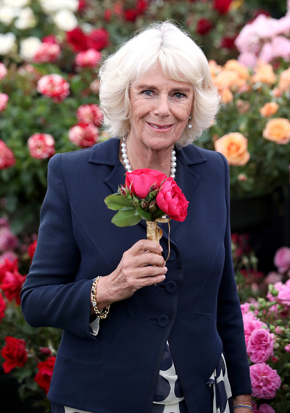 King's Lynn「The Prince Of Wales And Duchess of Cornwall Visit Sandringham Flower Show」:写真・画像(0)[壁紙.com]