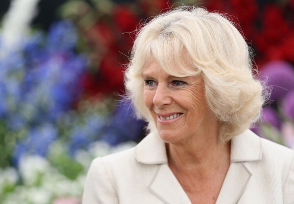 King's Lynn「The Prince Of Wales & Duchess Of Cornwall Visit The Sandringham Flower Show」:写真・画像(0)[壁紙.com]