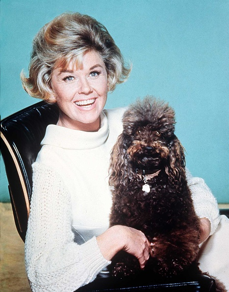 Actress「Doris Day」:写真・画像(14)[壁紙.com]