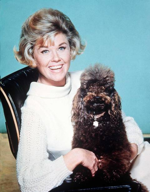 Doris Day:ニュース(壁紙.com)