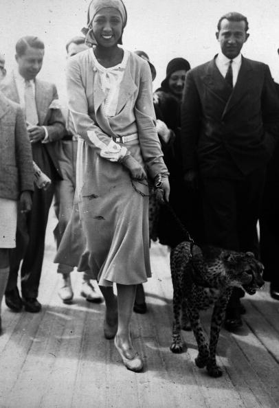 動物「Josephine Baker」:写真・画像(5)[壁紙.com]