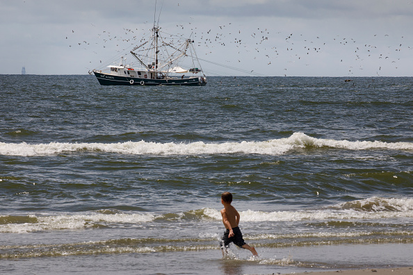 View Into Land「Combination Of Rising Sea Levels And Subsiding Land Endanger Louisiana Coast」:写真・画像(4)[壁紙.com]
