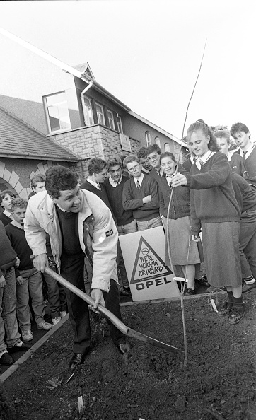 Planting「Stephen Roche at Dundrum College」:写真・画像(15)[壁紙.com]