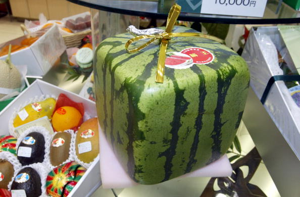 メロン「Square Watermelon in Japan」:写真・画像(3)[壁紙.com]