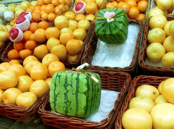メロン「Japan''s Square Watermelons」:写真・画像(10)[壁紙.com]