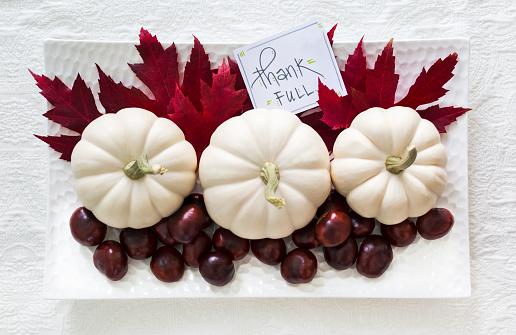 栗「White mini pumkins with a collection of red maple leaves and freshly harvested chestnuts on white fabric and a sign saying Thank Full」:スマホ壁紙(16)