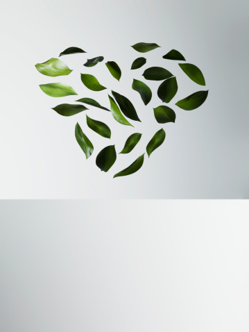 Hovering「Green leaves forming heart-shape」:スマホ壁紙(4)