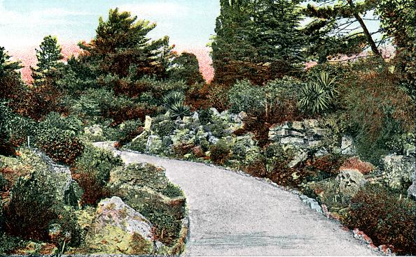 Ornamental Garden「The Rockery, Kew Gardens, Richmond upon Thames, London, 20th Century.」:写真・画像(0)[壁紙.com]