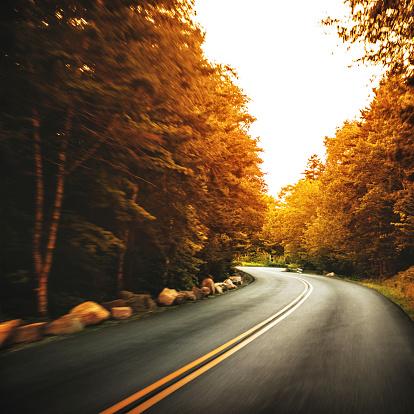 Dividing Line - Road Marking「Us road on acadia national park」:スマホ壁紙(2)
