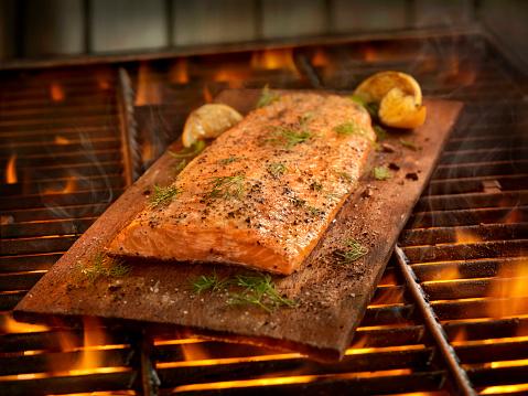 Grilled Salmon「Cedar Plank Salmon Cooking on the BBQ」:スマホ壁紙(11)