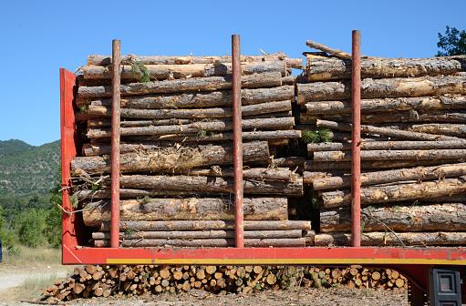 Lumber Industry「Cut Logs or Timber on Timber Truck」:スマホ壁紙(4)
