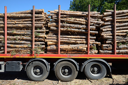 Lumber Industry「Cut Logs or Timber on Timber Truck or Trailer」:スマホ壁紙(5)
