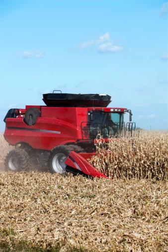 Harvesting「corn harvesting」:スマホ壁紙(2)
