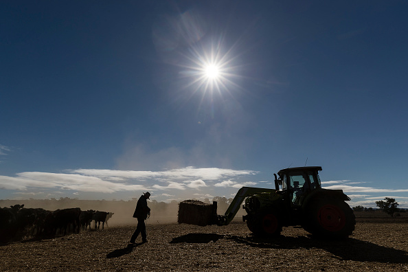 New South Wales「New South Wales Farmers Battle Crippling Drought」:写真・画像(0)[壁紙.com]